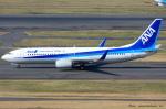 いおりさんが、羽田空港で撮影した全日空 737-881の航空フォト(写真)