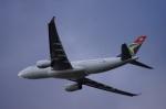 yusuke@HNDさんが、ロンドン・ヒースロー空港で撮影した南アフリカ航空 A330-243の航空フォト(写真)