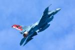 パンダさんが、三沢飛行場で撮影した航空自衛隊 F-2Aの航空フォト(写真)