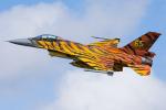Tomo-Papaさんが、フェアフォード空軍基地で撮影したベルギー空軍 F-16AM Fighting Falconの航空フォト(写真)