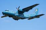 Tomo-Papaさんが、フェアフォード空軍基地で撮影したアイルランド空軍 -Irish Air Force- CN-235-100の航空フォト(写真)