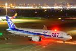 AkilaYさんが、羽田空港で撮影した全日空 787-8 Dreamlinerの航空フォト(写真)