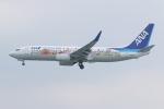 NIKEさんが、那覇空港で撮影した全日空 737-881の航空フォト(写真)
