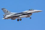 Ryan-airさんが、ネリス空軍基地で撮影したパキスタン空軍 F-16CM-52-CF Fighting Falconの航空フォト(写真)