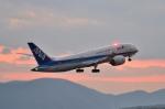 syuさんが、広島空港で撮影した全日空 787-881の航空フォト(写真)