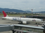 Shibataさんが、伊丹空港で撮影した日本航空 777-246の航空フォト(写真)