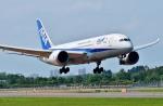 Dojalanaさんが、函館空港で撮影した全日空 787-881の航空フォト(写真)