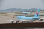 D50090さんが、仁川国際空港で撮影した大韓航空 747-8B5の航空フォト(写真)