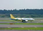 よんすけさんが、成田国際空港で撮影したセブパシフィック航空 A320-214の航空フォト(写真)