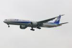 こだしさんが、成田国際空港で撮影した全日空 777-381/ERの航空フォト(写真)