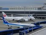 デウスーラ294さんが、中部国際空港で撮影した日本航空 787-9の航空フォト(写真)
