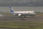 多楽さんが、羽田空港で撮影した全日空 787-881の航空フォト(写真)