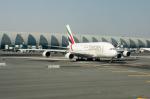 pinamaさんが、ドバイ国際空港で撮影したエミレーツ航空 A380-861の航空フォト(写真)