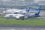goshiさんが、羽田空港で撮影した全日空 787-881の航空フォト(写真)