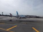 rikimaruさんが、ジョン・F・ケネディ国際空港で撮影したアルゼンチン航空 A330-223の航空フォト(写真)