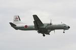 ふるちゃんさんが、厚木飛行場で撮影した海上自衛隊 YS-11A-325M-Aの航空フォト(写真)