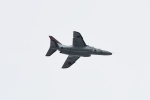 りゅうさんさんが、調布飛行場で撮影した航空自衛隊 T-4の航空フォト(写真)