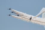 チャッピー・シミズさんが、ミラマー海兵隊航空ステーション で撮影したブライトリング・ジェット・チーム L-39C Albatrosの航空フォト(写真)