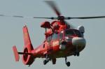 ヘリオスさんが、東京ヘリポートで撮影した東京消防庁航空隊 AS365N3 Dauphin 2の航空フォト(写真)