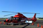350JMさんが、立川飛行場で撮影した東京消防庁航空隊 AS365N2 Dauphin 2の航空フォト(写真)