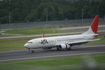 CLIP@h.s.さんが、成田国際空港で撮影した日本航空 737-846の航空フォト(写真)