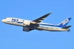 JA8961RJOOさんが、伊丹空港で撮影した全日空 787-8 Dreamlinerの航空フォト(写真)