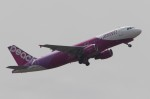 ユージ@RJTYさんが、成田国際空港で撮影したピーチ A320-214の航空フォト(写真)