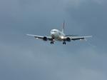 frankさんが、石垣空港で撮影したJALエクスプレス 737-446の航空フォト(写真)