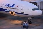 not-88さんが、羽田空港で撮影した全日空 777-281の航空フォト(写真)