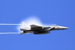 花田花男さんが、岐阜基地で撮影した航空自衛隊 F-15DJ Eagleの航空フォト(写真)