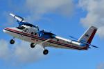だいせんさんが、プリンセス・ジュリアナ国際空港で撮影したウィンエア DHC-6-300 Twin Otterの航空フォト(写真)