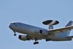 にゃんさんが、浜松基地で撮影した航空自衛隊 E-767 (767-27C/ER)の航空フォト(写真)
