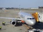TUILANYAKSUさんが、成田国際空港で撮影したジェットスター A320-232の航空フォト(写真)