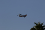 yte-tsuさんが、マッカラン国際空港で撮影したEG&G 737-66Nの航空フォト(写真)