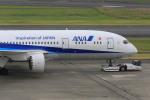 マルさんが、羽田空港で撮影した全日空 787-881の航空フォト(写真)