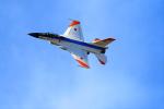 ogaさんが、岐阜基地で撮影した航空自衛隊 F-2Aの航空フォト(写真)
