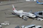 taka2217さんが、中部国際空港で撮影した日本航空 737-846の航空フォト(写真)
