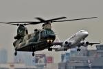 ビッグジョンソンさんが、春日基地で撮影した航空自衛隊 CH-47J/LRの航空フォト(写真)