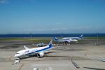 JA8501さんが、羽田空港で撮影した全日空 787-881の航空フォト(写真)