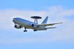 kingv150さんが、浜松基地で撮影した航空自衛隊 E-767 (767-27C/ER)の航空フォト(写真)