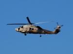 51ANさんが、鹿屋航空基地で撮影した海上自衛隊 SH-60Kの航空フォト(写真)