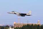 Oyasumiさんが、入間飛行場で撮影した航空自衛隊 F-15J Eagleの航空フォト(写真)