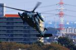 ogaさんが、入間飛行場で撮影した航空自衛隊 UH-60Jの航空フォト(写真)
