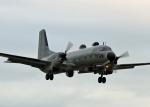 tuckerさんが、入間飛行場で撮影した航空自衛隊 YS-11A-402EBの航空フォト(写真)