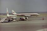 ninjaさんが、羽田空港で撮影した日本航空 DC-8-62Hの航空フォト(写真)