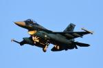 AkilaYさんが、三沢飛行場で撮影した航空自衛隊 F-2Aの航空フォト(写真)