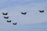 kaeru6006さんが、朝霞駐屯地で撮影した陸上自衛隊 CH-47JAの航空フォト(写真)