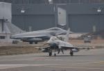mikechinさんが、三沢飛行場で撮影したイギリス空軍 EF-2000 Typhoon FGR4の航空フォト(写真)