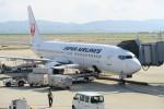 職業旅人さんが、関西国際空港で撮影した日本航空 737-846の航空フォト(写真)