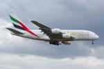 PASSENGERさんが、ロンドン・ヒースロー空港で撮影したエミレーツ航空 A380-861の航空フォト(写真)